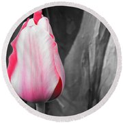 Pink Tulip Round Beach Towel by Chad and Stacey Hall