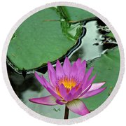 Round Beach Towel featuring the photograph Pink Water Lily by Judy Vincent