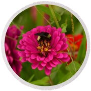 Pink Zinnia And Bee Round Beach Towel
