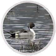 Pintail Duck Round Beach Towel