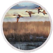 Pintail Fly By Round Beach Towel
