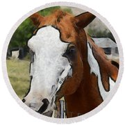 Round Beach Towel featuring the photograph Pinto In The Pasture Portrait  by Barbara Snyder