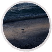 Piper At Dusk Round Beach Towel