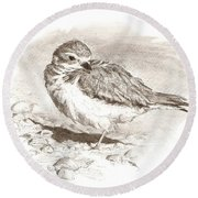 Piping Plover Round Beach Towel