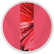 Pistil Shadow Round Beach Towel
