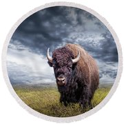 Plains Buffalo On The Prairie Round Beach Towel
