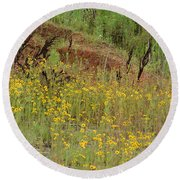 Plains Coreopis Round Beach Towel by Maria Urso