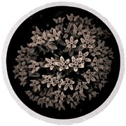 Planet Milkweed Round Beach Towel