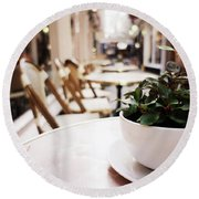 Plant In A Cup In A Cafe Round Beach Towel