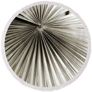 Round Beach Towel featuring the photograph Plant Lines by Marilyn Hunt