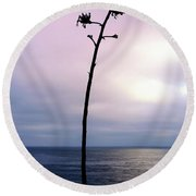 Round Beach Towel featuring the photograph Plant Silhouette Over Ocean by Mariola Bitner