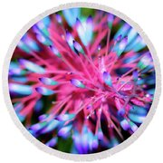Plants And Flowers In Hawaii 963 Round Beach Towel