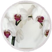 Platnum Beauty Orchids Round Beach Towel by Marsha Heiken