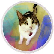 Playful Cat Round Beach Towel by Haleh Mahbod