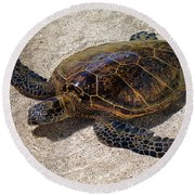Playful Honu Round Beach Towel
