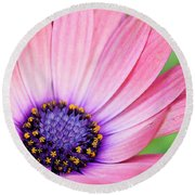 Pleasing Petals Round Beach Towel