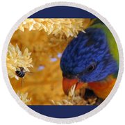Round Beach Towel featuring the photograph Plenty by Linda Hollis