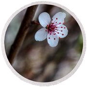 Plum Flower Round Beach Towel