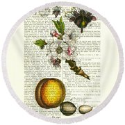 Plum Fruit And Blossom Plant Antique Illustration Round Beach Towel