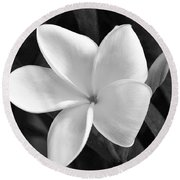 Plumeria In Monochrome Round Beach Towel