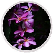 Round Beach Towel featuring the photograph Plumeria Light by Kelly Wade