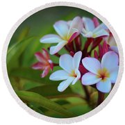 Round Beach Towel featuring the photograph Plumeria Sunset by Kelly Wade
