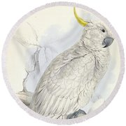 Plyctolophus Galeritus. Greater Sulphur-crested Cockatoo. Round Beach Towel