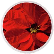 Poinsetta Round Beach Towel