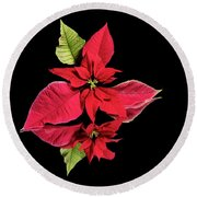 Poinsettia Reflection  Round Beach Towel