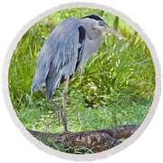 Poised And Focused Round Beach Towel by Judy Kay