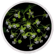 Poke Milkweed Round Beach Towel by Barbara Bowen