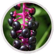 Pokeweed Cluster Round Beach Towel