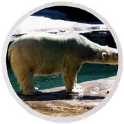 Polar Bear 3 Round Beach Towel