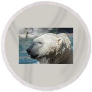Polar Bear Club Round Beach Towel