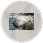 Polar Bear Club Round Beach Towel