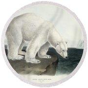 Polar Bear Round Beach Towel by John James Audubon