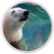 Polar Bear Up Close Round Beach Towel