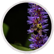 Round Beach Towel featuring the photograph Pollen Collector 3 by Jay Stockhaus
