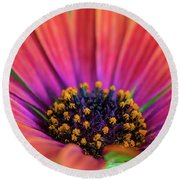 Pollen Round Beach Towel