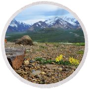 Polychrome Pass, Denali Round Beach Towel