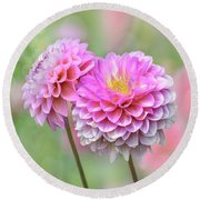 Round Beach Towel featuring the photograph Pompon Dahlias by John Poon