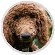 Poodle Pup Round Beach Towel
