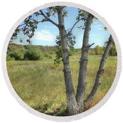 Poplar Tree In Autumn Meadow Round Beach Towel