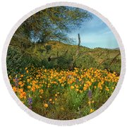 Poppies Abound Round Beach Towel by Tom Kelly