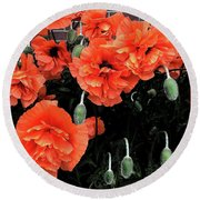 Poppies Round Beach Towel by David Pantuso
