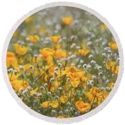 Round Beach Towel featuring the photograph Poppies Fields Forever  by Saija Lehtonen