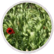 Round Beach Towel featuring the photograph Poppies In Wheat by Raffaella Lunelli