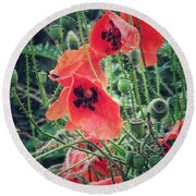 Poppies Round Beach Towel by Karen Stahlros