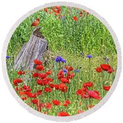 Poppies With A Cardinal Round Beach Towel