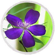 Round Beach Towel featuring the painting Poppin Purple Flower by Penny Lisowski